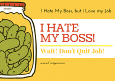 I Hate My boss, May i quit my Job?