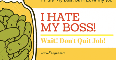 I Hate My boss, May i quit my Job?