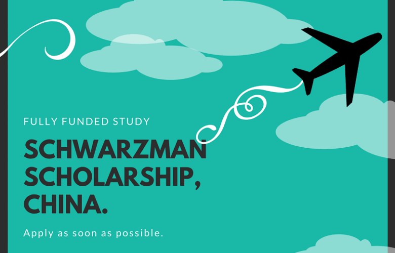 Schwarzman Scholarship china
