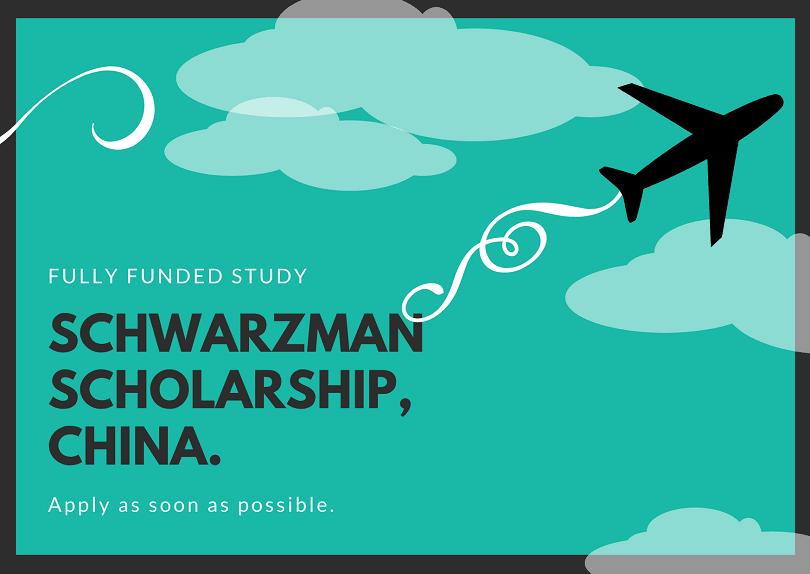 Schwarzman Scholarship china