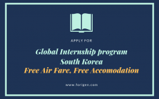 Global Internship Program