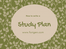 Study plan for scholarship