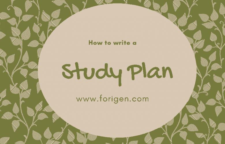 Study plan for scholarship