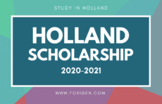 Holland Scholarship 2020-2021