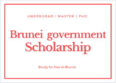 Brunei Government Darussalam Scholarship 2020-2021 - Brunei Scholarship 2020-2021