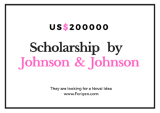 Johnson & Johnson US$200000 Fund Scholarship for International Students
