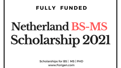 Netherlands BS-MS Scholarships for international Students