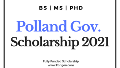 Poland Government Scholarship 2021 for BS, MS, PhD Programs (For International Students) - Poland Łukasiewicz Scholarship 2021