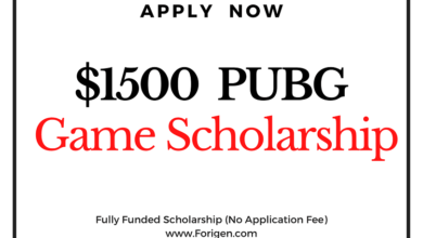 PUBG Online Gaming Scholarship 2021 (US$1500) - Everyone can apply!