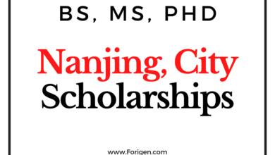 Nanjing Municipal Government Scholarship 2021 - Online Application Open
