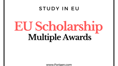 EU Academic Excellence Award Scholarship Deadline September