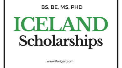 Top 5 Scholarships in Iceland