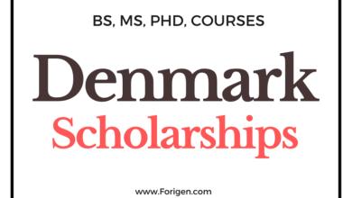 List of Top 10 Scholarships in Denmark