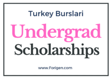 Turkish Undergrad Scholarship 2021-2022 Applications Open!