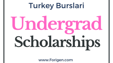 Turkish Undergrad Scholarship 2021-2022 Applications Open!