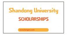 Shandong University Scholarships