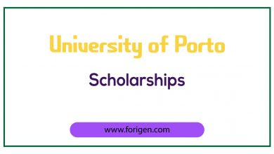 University of Porto Scholarships