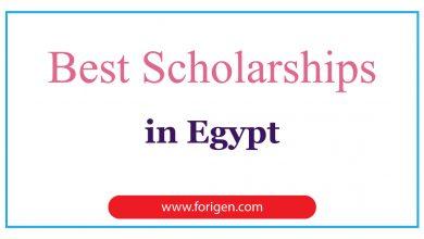 Best Scholarships in Egypt