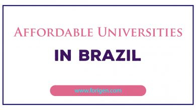 Affordable Universities in Brazil