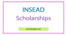INSEAD Scholarships