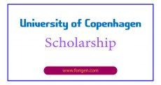 University of Copenhagen Scholarship
