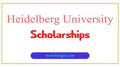 Heidelberg University Scholarships